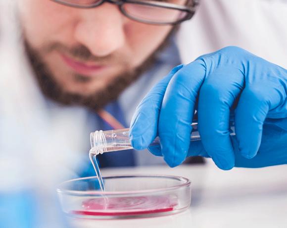 Vasi sanguigni umanicreati per la prima volta in laboratorio