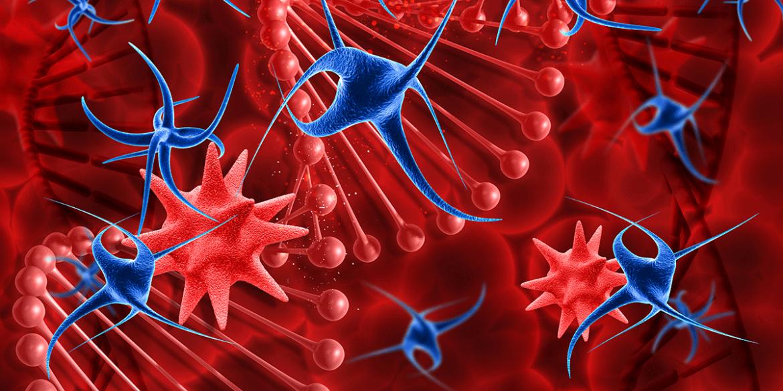 CAR-T. Nuove frontiere nella terapia delle malattie del sangue